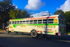 Bild-Panama-Überland-Bus