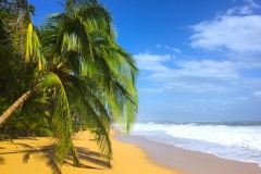 Bild-Panama-Bluff-Beach-2