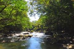Bild-Panama-Landschaft-mit-Fluss